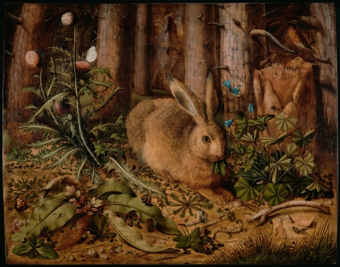 Hans Hoffmann - A Hare in the Forest - small